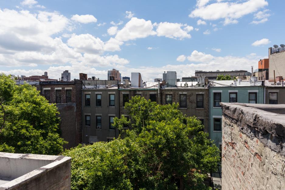 160 West 120th Street Mt. Morris Park New York NY 10027